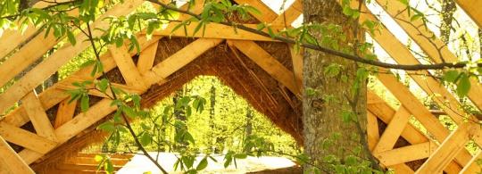 Летний домик из соломы с живой сосной по центру (фото)