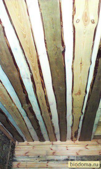 Потолок из необрезной доски