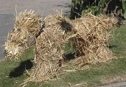 Соломенный пес, фигура собаки из соломы