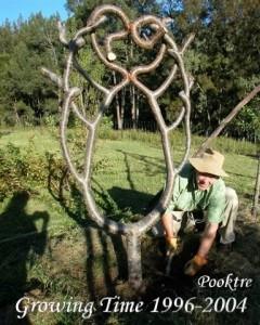 Дерево в форме короны
