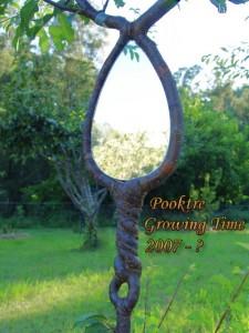 Дерево в форме зеркала 2