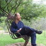 Живое дерево-кресло