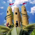 Кукурузный дом