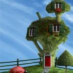 Дом цветная капуста