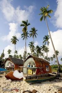 Дом-кокос