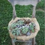 Старый стул как цветочный горшок