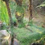 Стул с травой