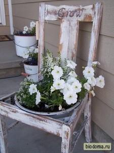 Горшок с цветами на старом стуле