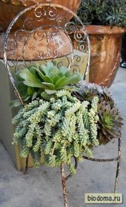 Вместо подставки для цветов - стул