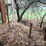 Деревянные колышки в соломенных блоках