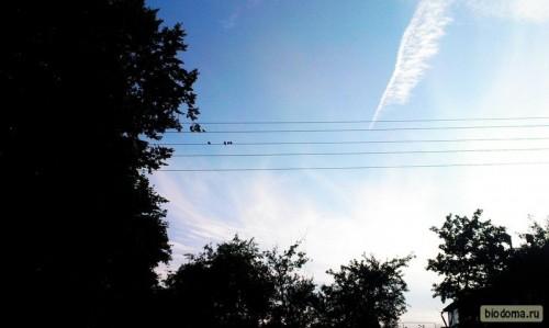 Ласточка-мама и птенцы сидят на проводах