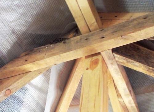 Ласточки поселились под крышей