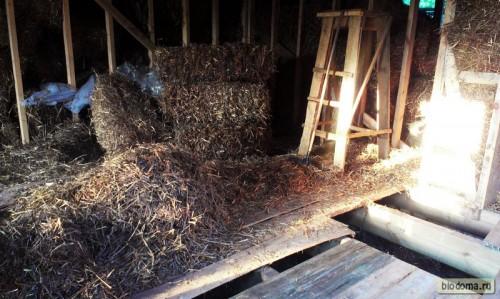 Будущая гостиная пока завалена блоками и обрезанной соломой. Делаем черновой пол