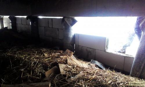 Под домом еще много обрезков досок и прочих отходов - планирую сделать в одном месте дверь, чтобы был доступ сюда снаружи...