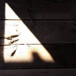 Щели в деревянном полу, треугольная тень из от солнца