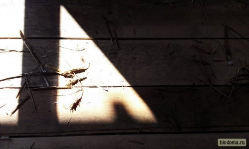 Художественная тень)
