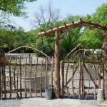 Забор и калитка из сучьев