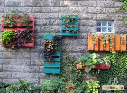 Разрезанные поддоны, окрашенные в разные цвета, оригинально смотрятся на кирпичной стене, особенно если в них уже цветочки расцвели...