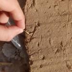 Солома в глиняной штукатурке